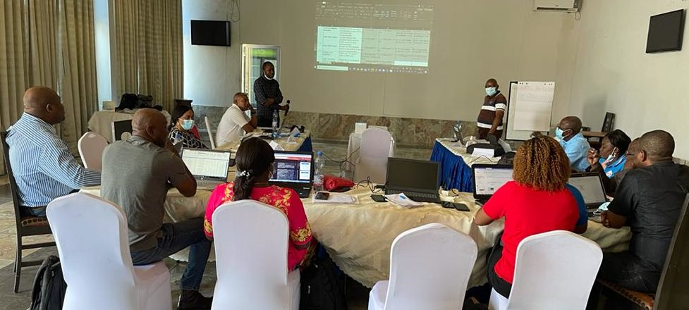 DRC NMCP and PMM staff participate in an METWG meeting. Photo by Erick Tshikamba.